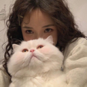大猫猫没头 - 橙光